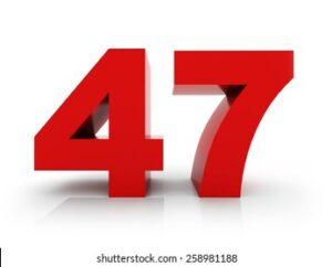 47 Warren Minsull